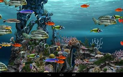 Animasi Bergerak Underwater Aquarium Dan Wallpapers 1277