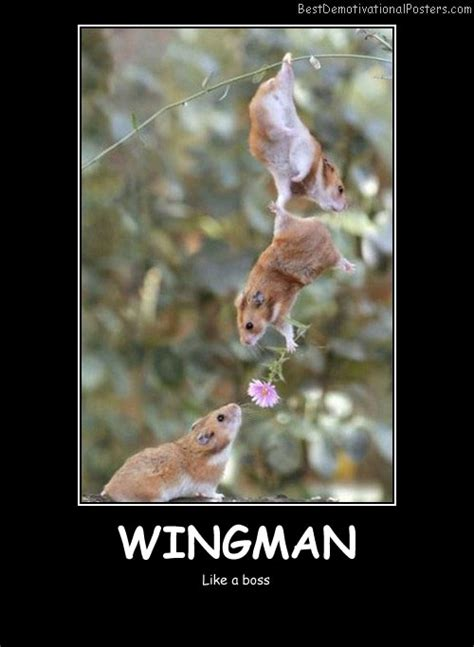 wingman motivational poster