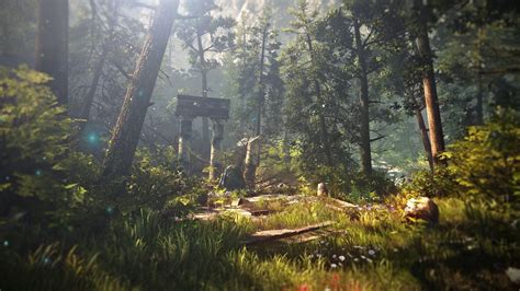 witcher  assassins  kings forest nature