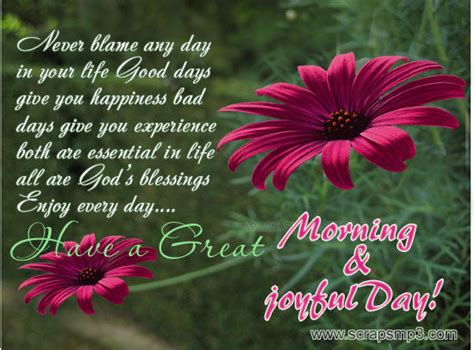 great morning joyful day pictures
