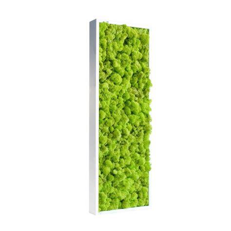 fourniture bureaux tableau de lichen stabilisé vert citron pour bureau