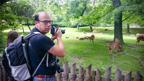 cameras zoo testing
