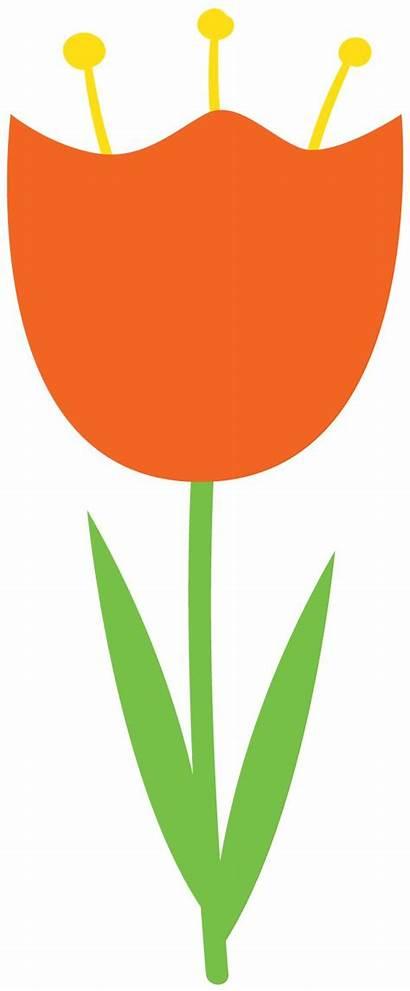 Tulip Clipart Clip Flowers Felt Paper Orange