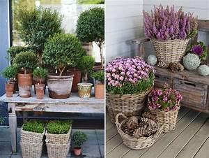 Winterharte Pflanzen Für Balkon : den balkon winterfest machen wir zeigen wie es geht ~ Somuchworld.com Haus und Dekorationen