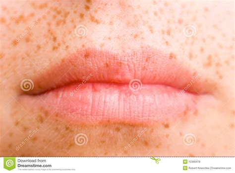 Closed Mouth Stock Photo Image Of Face, Elegance, Front