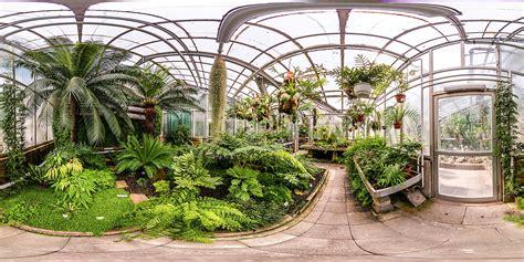 Botanischer Garten Köln Essen by Botanischer Garten Gie 223 En Gew 228 Chhaus F 252 R Farne Und
