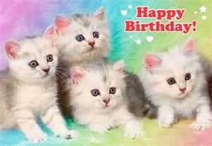extremely kittens birthday card greeting cards hallmark