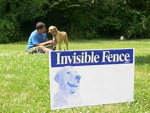 Best invisible dog fence an all inclusive review of the for Best invisible dog fence