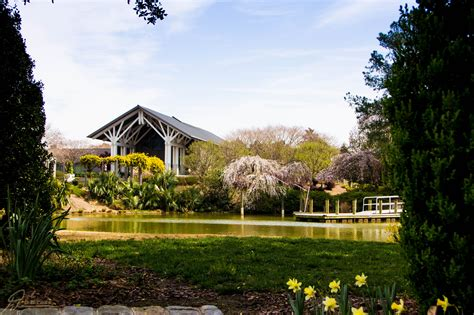 botanical gardens va norfolk botanical garden virginia is for