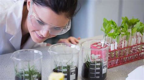 Biologist Technician Jobs - Description, Salary, and ...