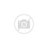 Lily Coloring Pages Flower Single Colorings sketch template