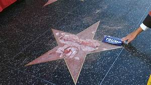 Donald Trump Walk of Fame Star Vandal Arrested by LAPD ...