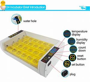 Hhd Newest Automatic Mini Chicken Egg Incubator Holding 24