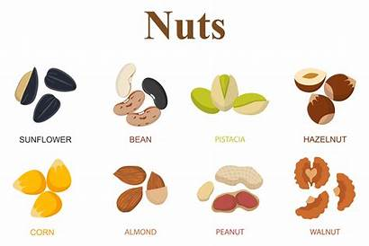 Nuts Types Different Eight Tree Background Royalty