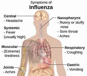 Home remedies for flu body aches