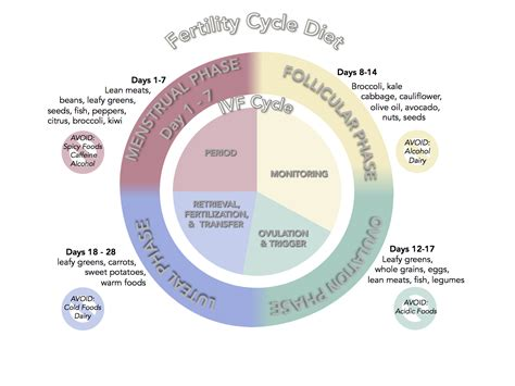 fertility diet suggestions  japanese acupuncture clinic