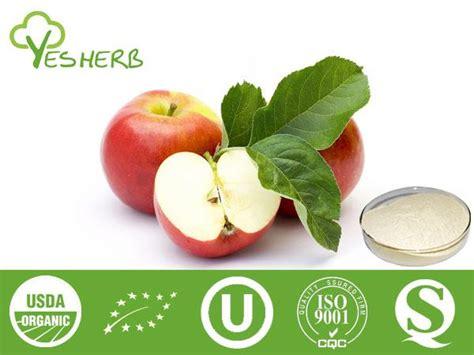 apple powder manufacturer juice powder xian yuensun