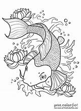 Koi Fish Pond Drawing Outline Coloring Pages Japanese Colors Tattoo Water Drawings Line Printcolorfun Getdrawings Swimming Different Several Vector sketch template