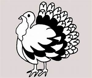 19+ Beautiful Collection Of Turkey cliparts, Images ...