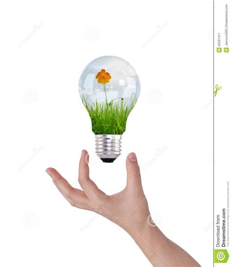 inside of a light bulb light bulb with beautiful flower inside stock image