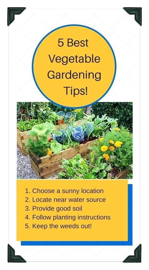 raised bed gardens can save you loads of raised bed garden plans raised bed gardens can save you