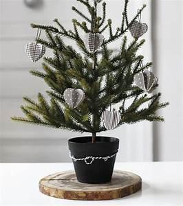 Tannenbaum Im Topf : die besten 25 tannenbaum im topf ideen auf pinterest topfweihnachtsb ume weihnachten topiary ~ Frokenaadalensverden.com Haus und Dekorationen
