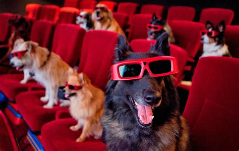top   dog movies  family