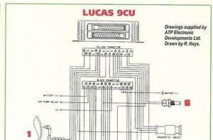2 Wire Crank Sensor Wiring Diagram