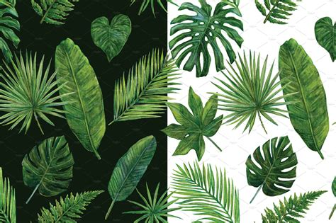 tropical greens illustrations creative market