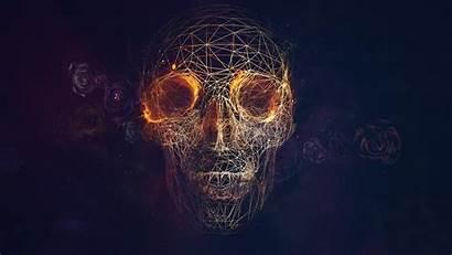 Skull Wallpapers Desktop Backgrounds Fire Background Rose