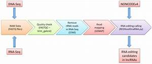 Reditools  U2013 Uncovering Rna Editing Sites In Long Non