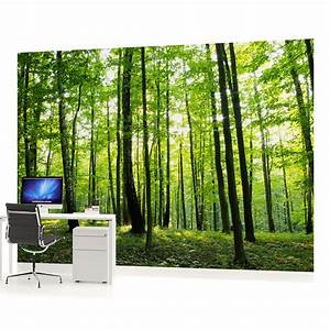 WALL MURAL PHOTO WALLPAPER (186VEVE) Forest Wood Landscape ...