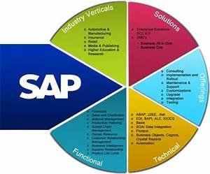What Are The Best Sap Modules To Learn  Zarantech