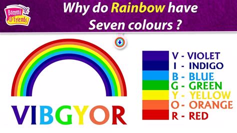 7 colors of rainbow why does rainbow seven colours skillful libro book