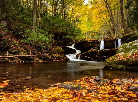smoky mountain fall colors yahoo travel names smoky mountains fall colors among best