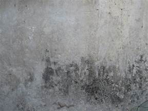 Cracks On Ceiling And Walls by Cement Textures