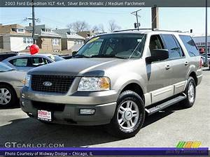 Silver Birch Metallic - 2003 Ford Expedition Xlt 4x4