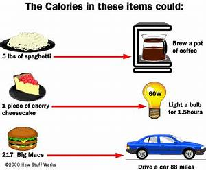 How Calories Work | HowStuffWorks