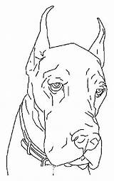 Coloring Dane Dog Dogs Colouring Adult Drawings Danes Animal Canine Lovesmag Printable Drawing Marshmello Dj Adults Books sketch template