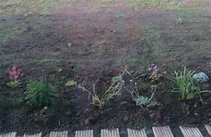 Wann Keimt Rasen : 24 juni 2014 unser hausbau ~ Lizthompson.info Haus und Dekorationen