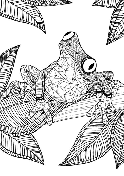 Frog adult colouring page : Colouring In Sheets Art