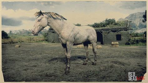 rdr2 horses andalusian horse dead redemption breeds