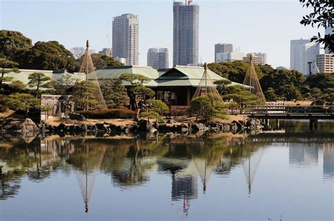Japanischer Garten Osaka by 8 Beautiful Parks To Visit In Tokyo Tsunagu Japan