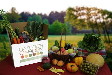 natures garden delivered kitchen confidential 3 atlanta based grocery delivery