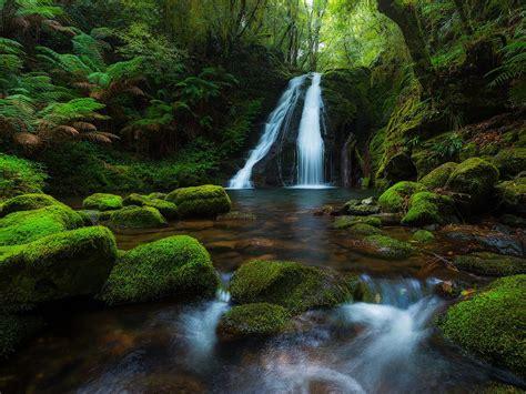 england national park australia rainforest waterfall
