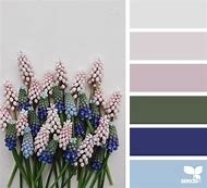 Color Design Seeds Spring