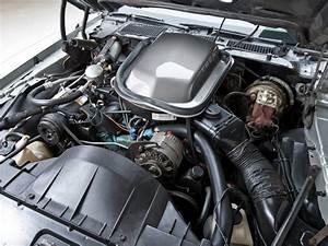 1979 Pontiac Firebird Trans Am T