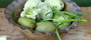 Eierfärben Mit Naturfarben : ostereier f rben mit pflanzenfarben ~ Yasmunasinghe.com Haus und Dekorationen