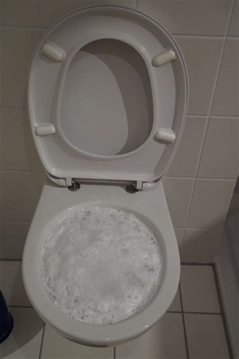 papier toilette qui se dissout dans l eau comment d 233 boucher un wc comment entretenir ses toilettes