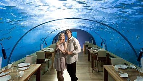 hilton s maldives underwater hotel the ultimate room with